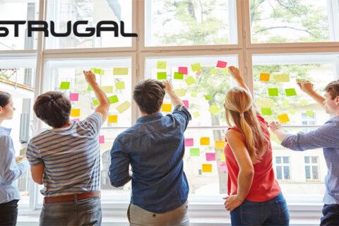Modelación de negocio y transformación digital en Strugal